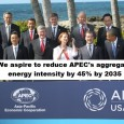 """At the APEC summit in November 2011 we find in the Honolulu declaration under """"Promoting green growth"""": We will also take the following steps to promote our green growth goals: […]"""